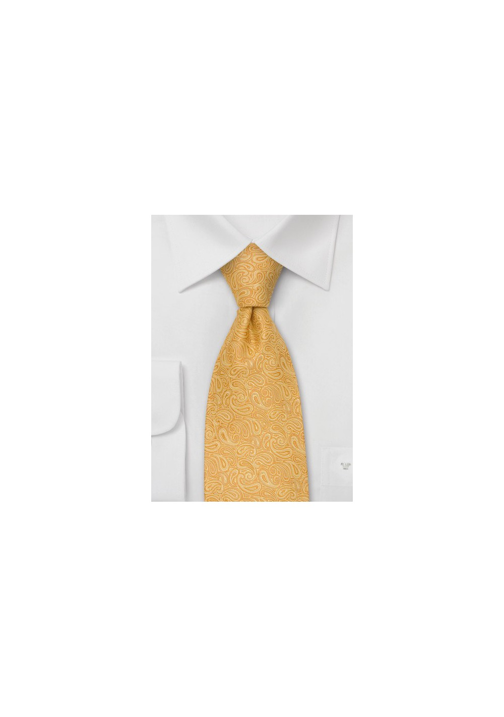 Modern Paisley Tie by Chevalier
