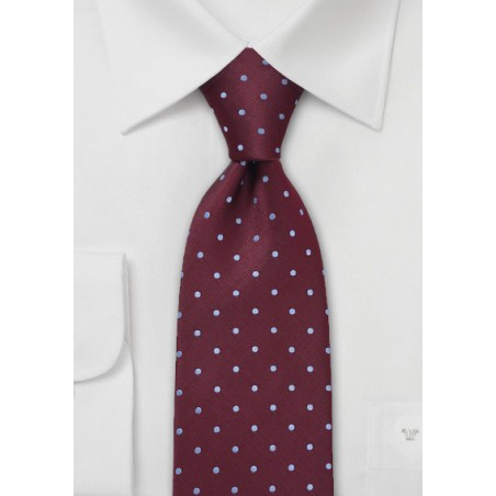 Polka Dot Tie Light Blue Burgundy