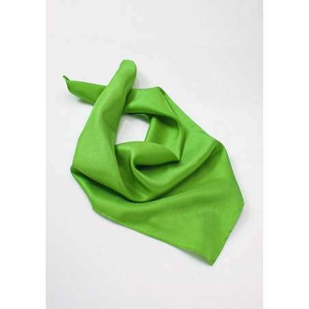 Bright Lime Green Womens Scarf