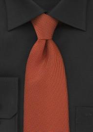 Fall Colored Tie in Rich Persimmon