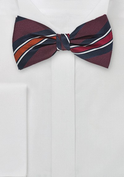 Striped Bow Tie in Merlots and Navys