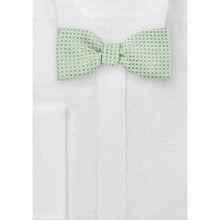 Self Tie Bow Tie in Platinum and Lime
