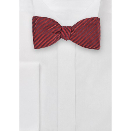 Trendy Bowtie with Narrow Stripes in Crimson