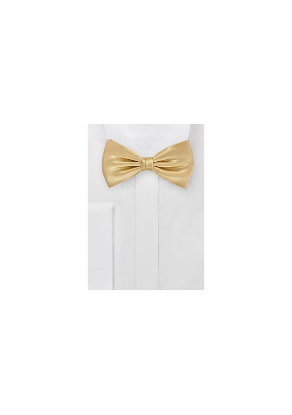 Vintage Gold Bow Tie