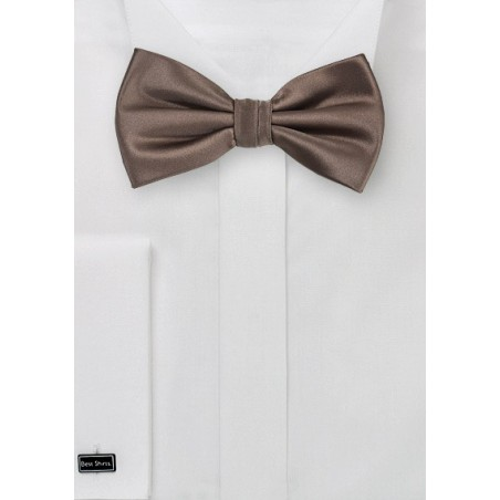 Coffee Brown Men's Bow Tie