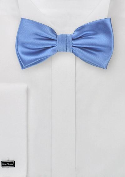 Elegant Blue Mens Bow Tie