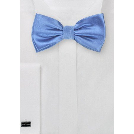 Elegant Blue Mens Bow Tie