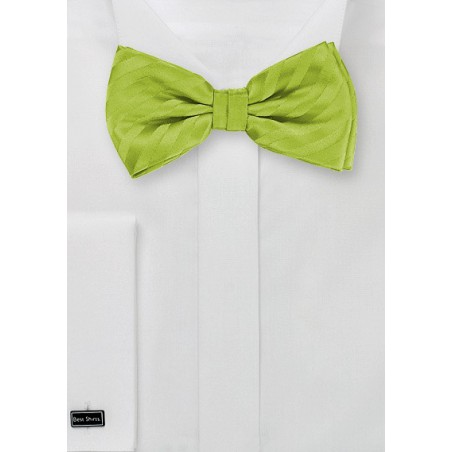 Apple Green Striped Bow Tie