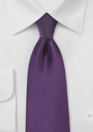 Solid Color Tie in Eggplant