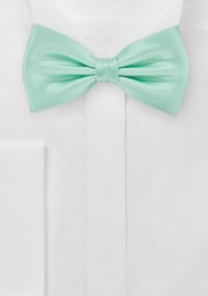 Honeydew Colored Bow Tie