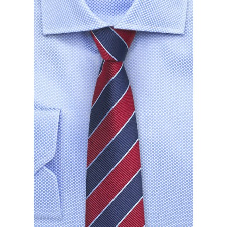 Collegiate Stripe Skinny Tie in Red and Blue