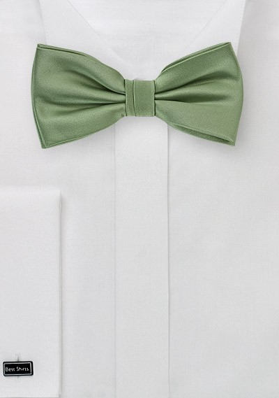 Sage Colored Bow Tie