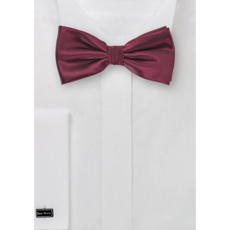 Wine Red Colored Bow Tie