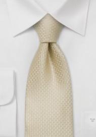 Champagne Silk Tie for Kids