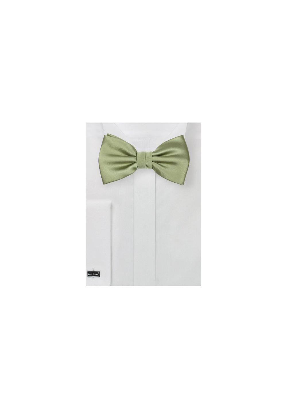 Tea Green Mens Bow Tie