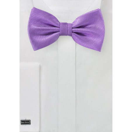 Textured Bow Tie in Violet