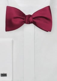 Elegant Solid Burgundy Self-Tie Bow Tie
