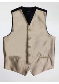 Formal Mens Vest in Golden Vest
