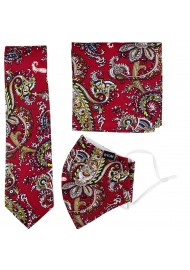 Paisley Necktie and Mask Gift Set