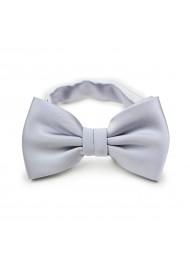 Silver Gray Bow Tie