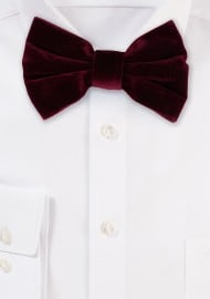 Large Butterfly Velvet Bow Tie in Burgundy Red