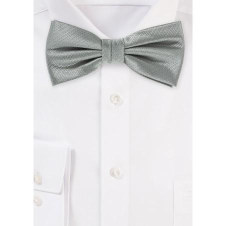 Dress Bow Tie in Formal Gray
