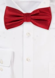 Elegant Dress Bow Tie in Cherry