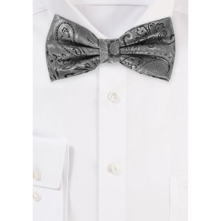 Dressy Paisley Design Bow Tie in Mercury