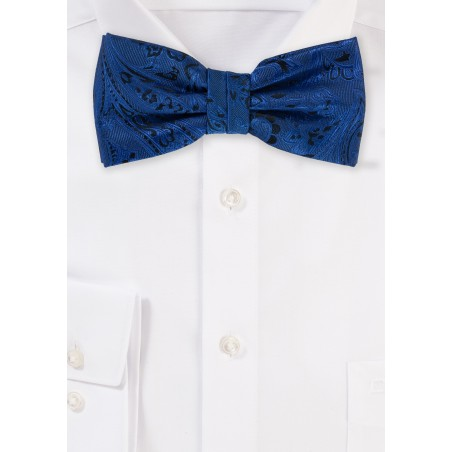 Elegant Royal Paisley Bow Tie
