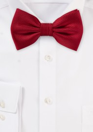 Microtexture Bow Tie in...
