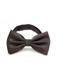 Coffee Brown Men's Bow Tie
