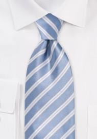 Hydrangea Blue Striped Tie