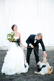 wedding-dog-funny