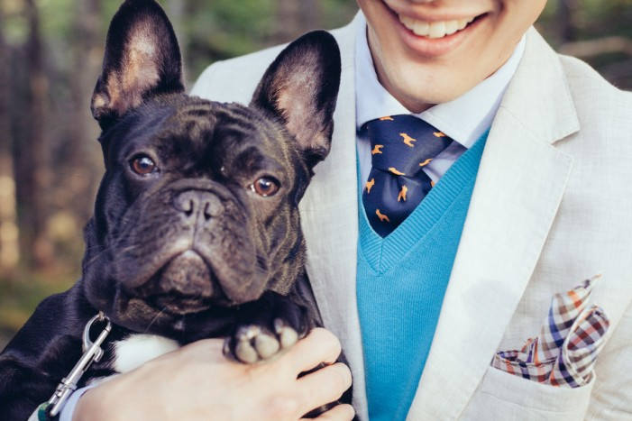french-bulldog-necktie-pocket-square