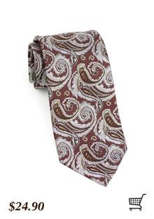 Paisley Tie in Brown