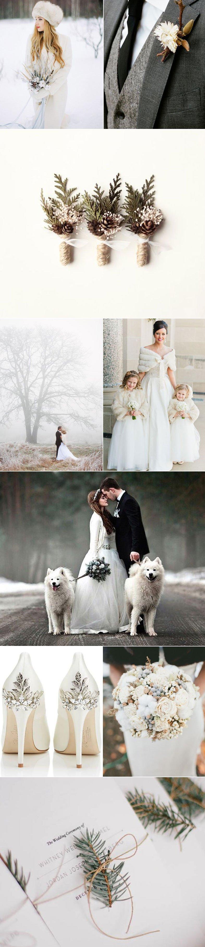 Weddings & Bows-n-Ties - Part 16