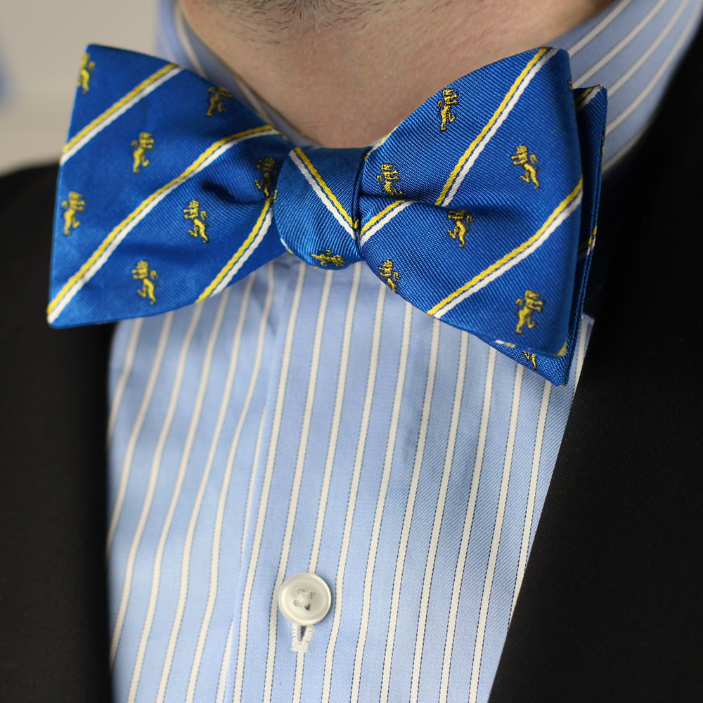 Alpha Epsilon Pi Men's Bow Tie Styled