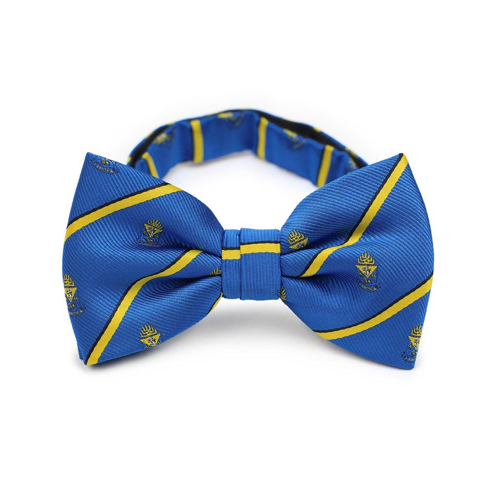 Alpha Epsilon Pi Men's Bow Tie Pre-Tied