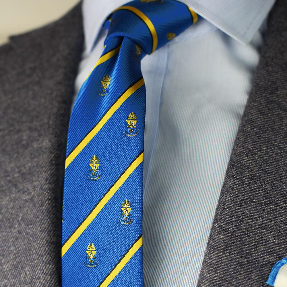 Alpha Epsilon Pi Men's Skinny Necktie Styled