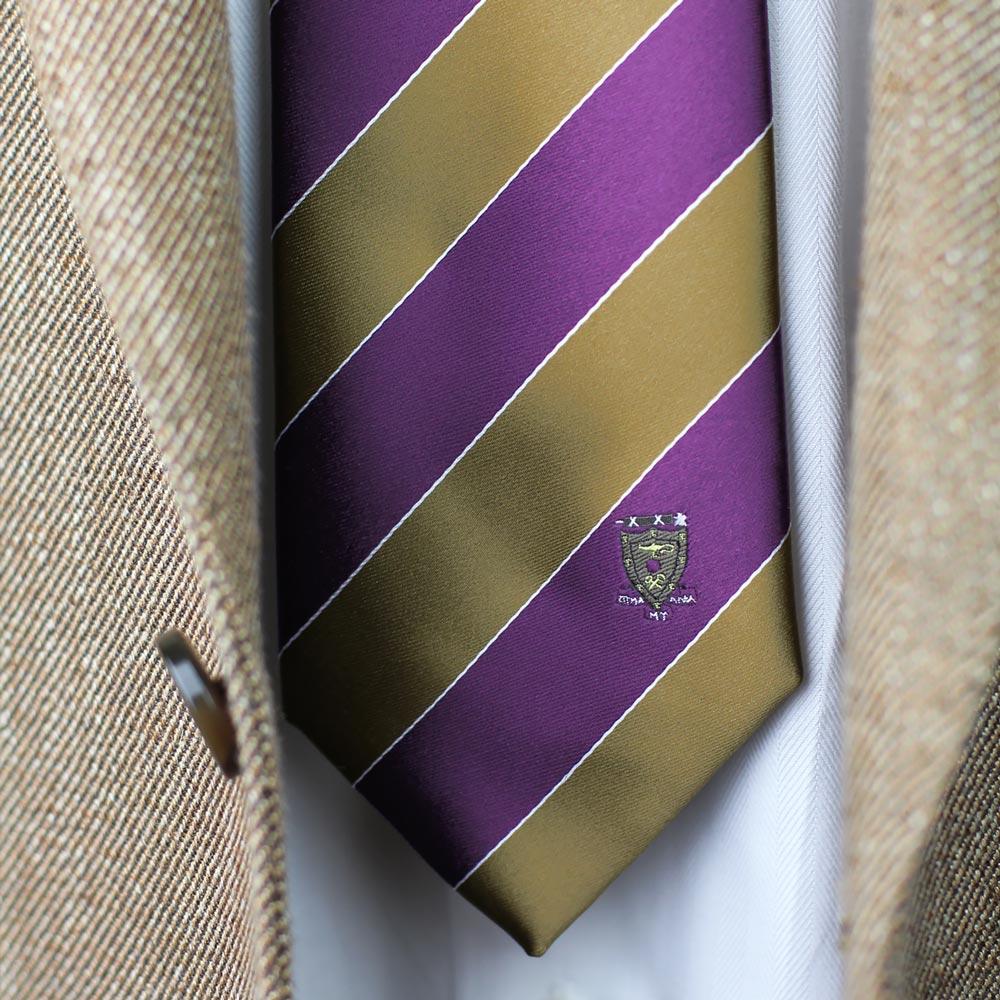 Sigma Alpha Mu Men's Skinny Necktie Styled