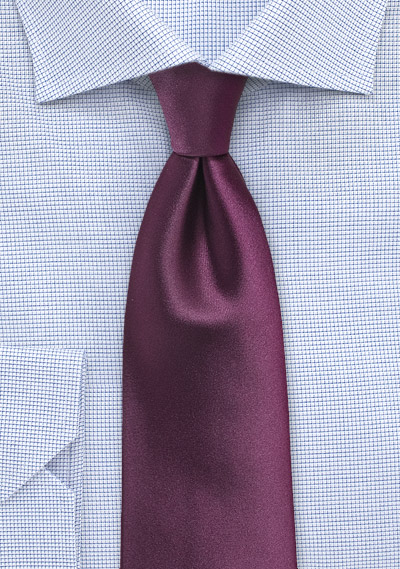 Solid Color Tie in Plum