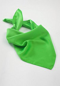 Chic Scarf in Kelly Green