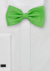 Grass Green Hued Bow tie