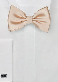Solid Bow Tie in Champagne
