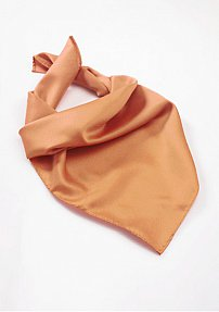 Shiny Solid Color Scarf in Apricot