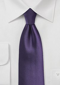 Solid Color Tie in Majesty