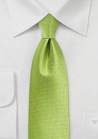 Solid Necktie in Palm Green