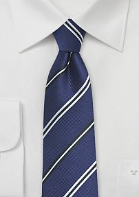 Elegant Repp Stripe Tie in Blue and Silver
