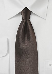 Satin Silk Tie in Coffee Bean