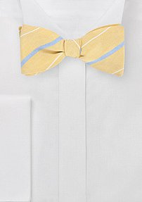 Handsome Striped Self Tie Bow Tie